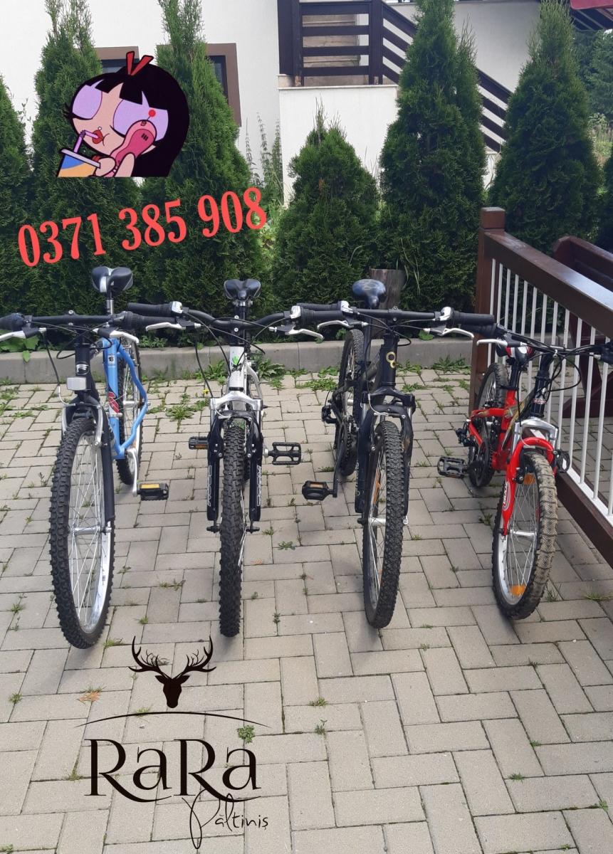 Biciclete de inchiriat!
